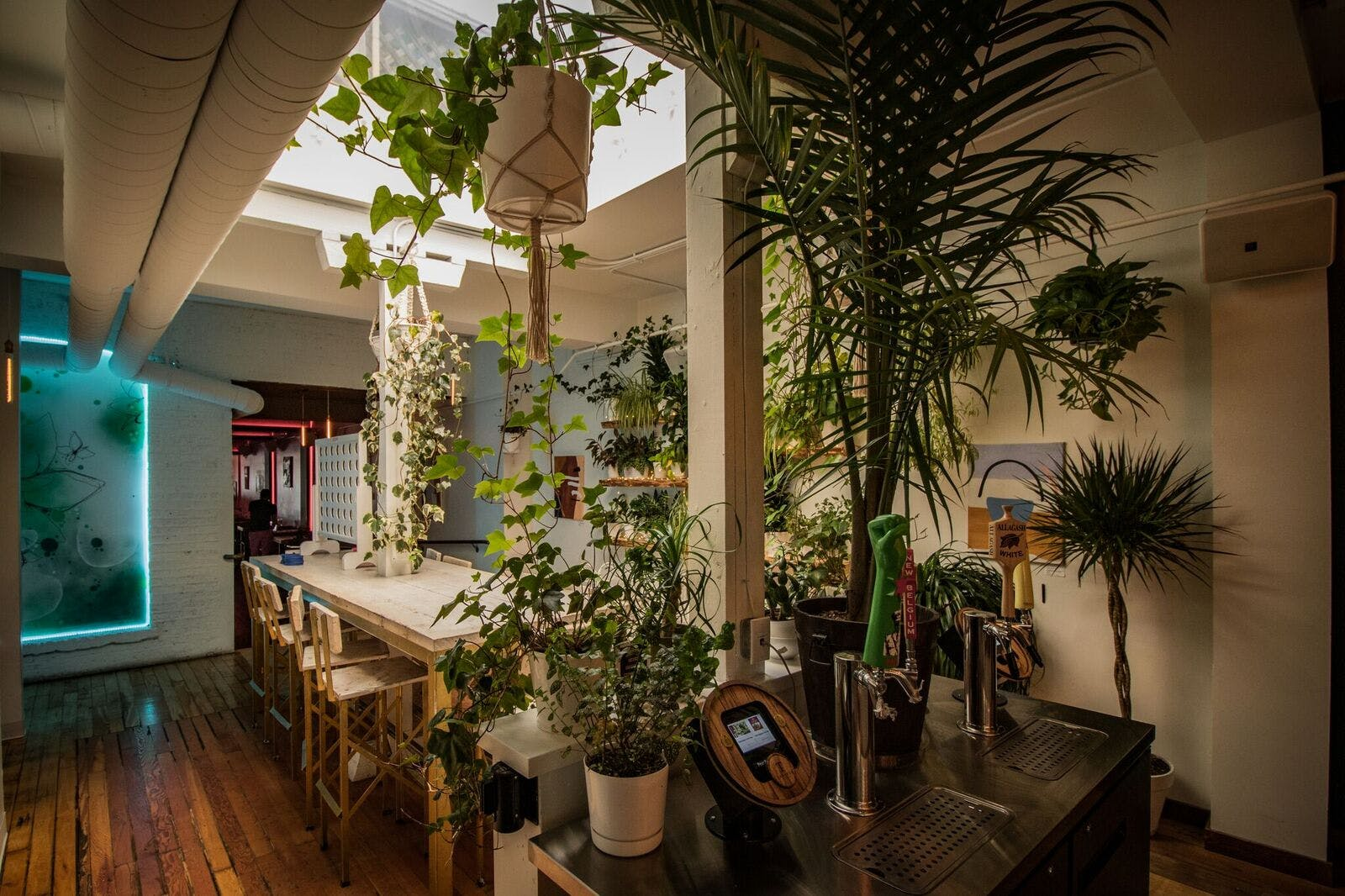 An indoor dinning room with a lot of plants.